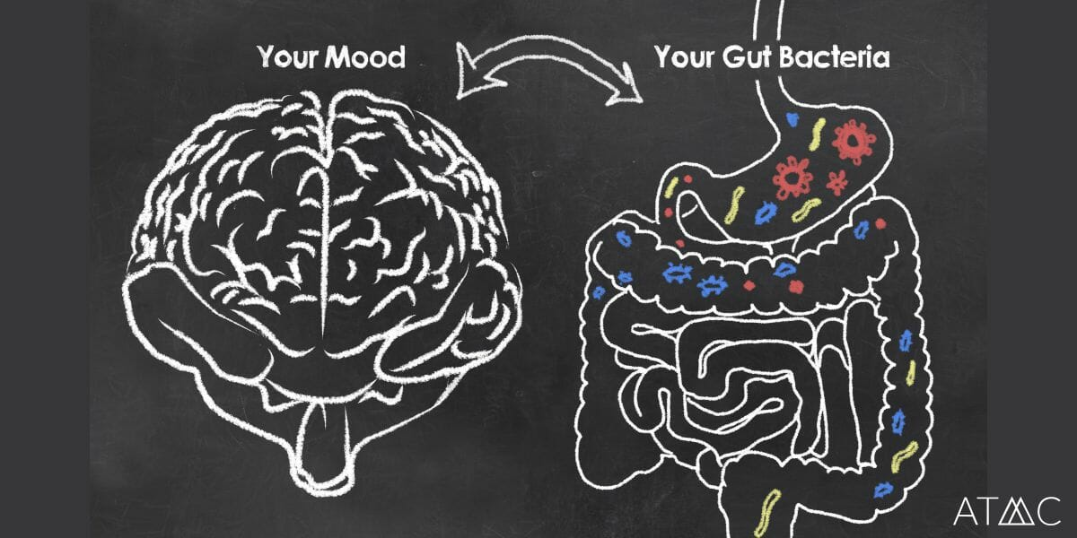 The Microbiome and Mental Health