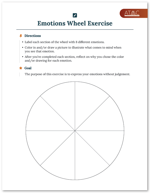 emotions wheel exercise